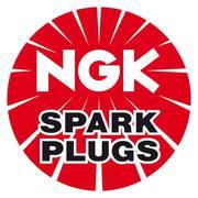 Best Platinum Spark Plug Manufacturers | NGK Conventional Spark Plugs